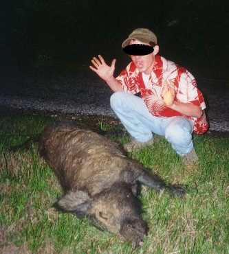 feral hog north texas roadkill